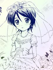 秘密的新娘小姐