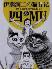 伊藤润二の猫日记